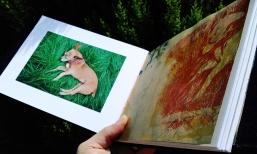 Libro de Ensayo Fotográfico.