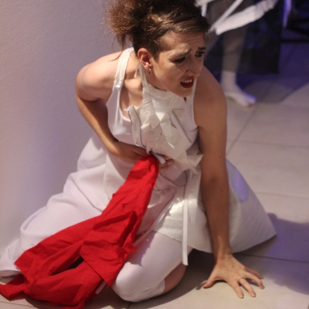 MEDEA - Evelyn Rodríguez Schvemler