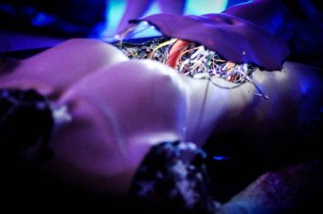 Detalle estómago Droide (instalación: Diego Figueroa(
